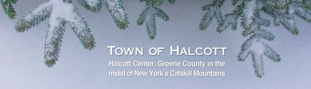 Town of Halcott, Halcott Center, NY