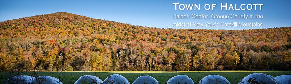 Town of Halcott, Halcott Center, NY | Greene County, in the midsthalcott town