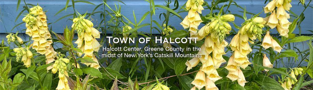 Town of Halcott, Halcott Center, NY